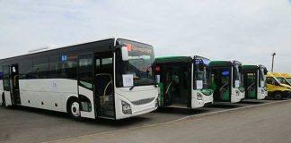 Между Шымкентом и Ташкентом будут ходить автобусы