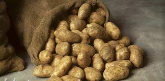Картошка в Шымкенте