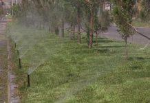 полив зеленых насаждений