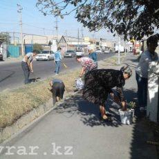 Жители Шымкента вышли на субботник