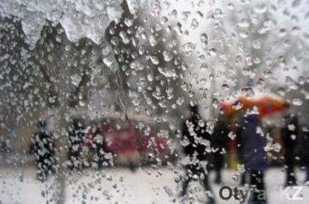 Прогноз погоды на начало октября