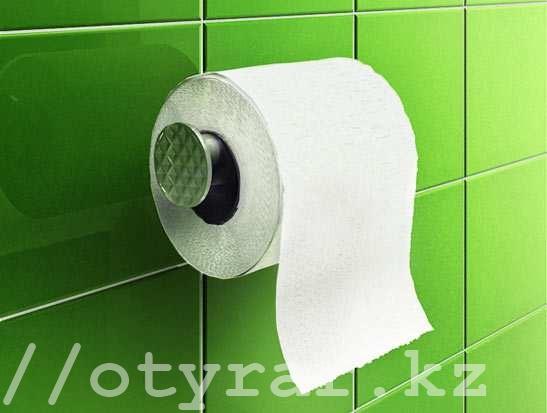 В Казахстане изобрели многоразовую туалетную бумагу