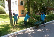 Ко дню пожилых людей в ЮКО появятся «тимуровцы»