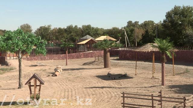 Зона Африки в зоопарке