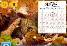 погода на 5 октября