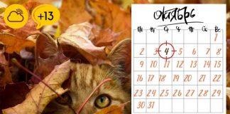 Прогноз погоды октябрь