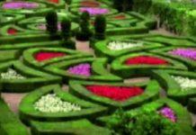 Городская свалка Шымкента превращается в парк