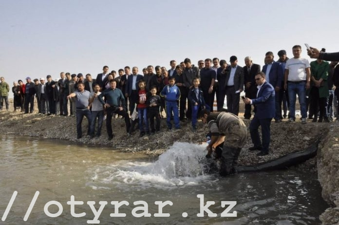 В Байдибекском районе ЮКО в бассейн для разведения рыб пустили 50 тысяч чебаков