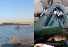 37 фактов браконьерства выявлено в ЮКО