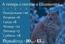 Погода в Шымкенте на Новый год