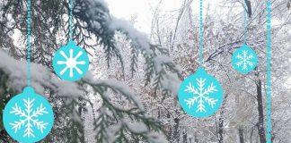 Снег в Шымкенте