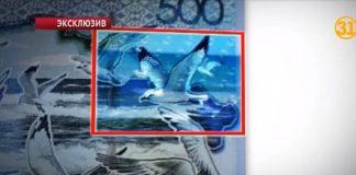 Еще один иностранный фотограф заявил о своих правах на изображение чайки на банкноте в 500 тенге