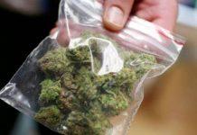В ЮКО задержан гражданин Узбекистана, который пытался пронести около 50 граммов марихуаны