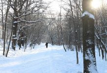 Зима. Погода на Крещение