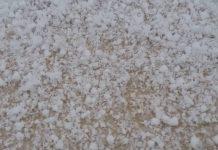 Шымкентский снег крупой