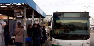 Автобус Грин Бас компани