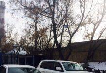 Наказаны водители, устроившие байгу на улице Шымкента
