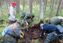 Поисковики в Псковской области