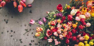 Как выбрать и сохранить цветы