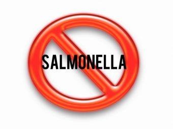Что такое сальмонеллез