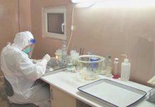 лаборатория, клещи
