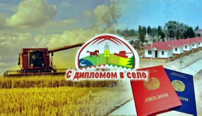 С дипломом - в село