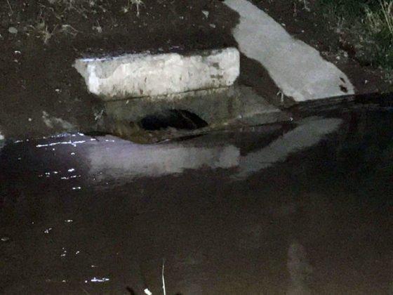 В Шымкенте произошло подтопление жилых домов водой из водохранилища