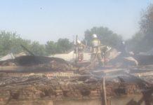 Трехлетний ребенок сгорел в автомобиле в Сарыагашском районе