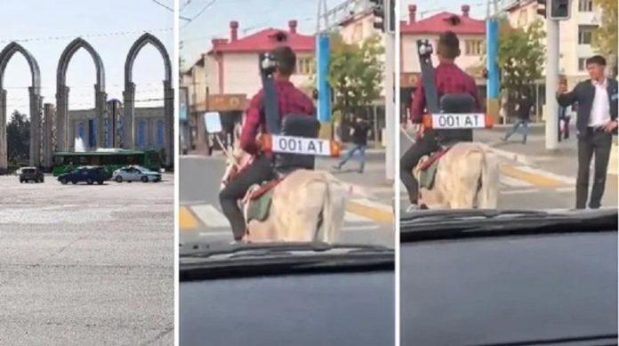 Мужчина на осле ездил в центре Алматы