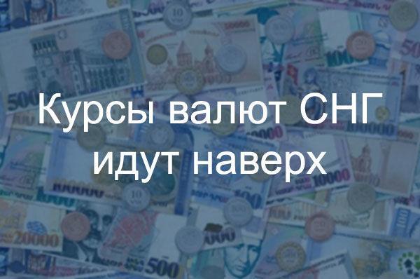 Курсы валют СНГ идут наверх