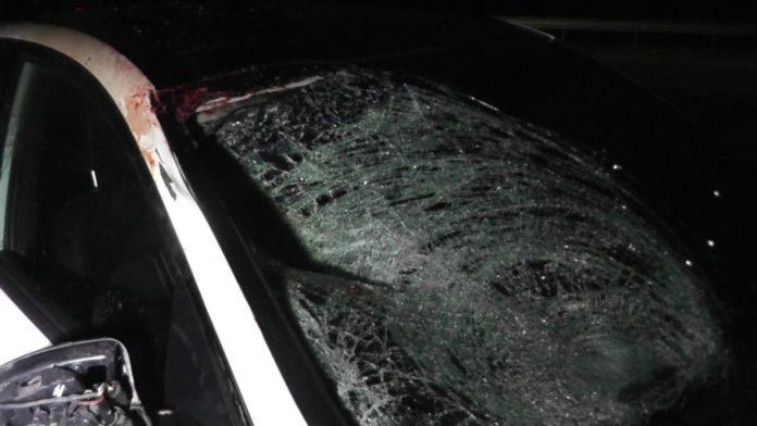 На трассе Алматы-Ташкент-Термез в результате ДТП погиб пешеход