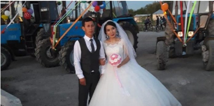 свадьба в селе, трактора
