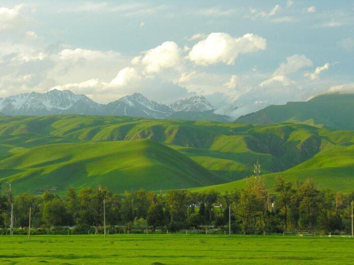 зеленый Казахстан